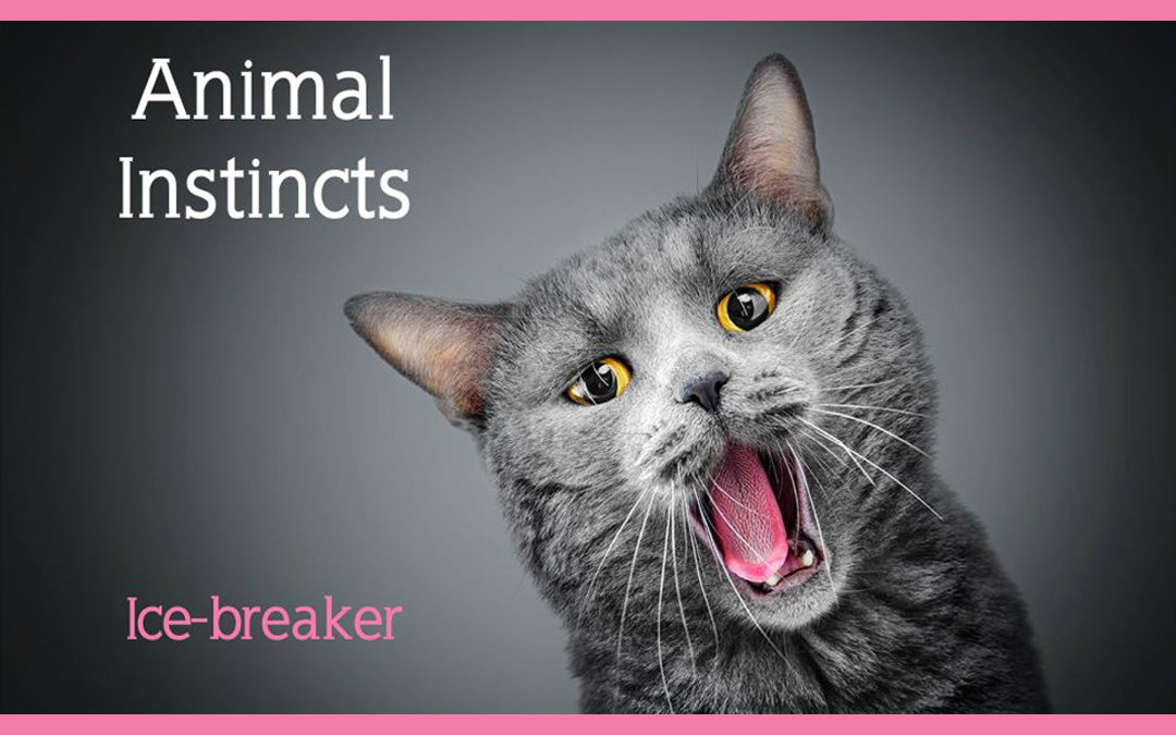Animal Instincts IceBreaker | eLearning
